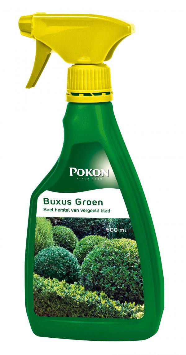 Pokon Buxus groen (probleemoplosser) 500 ml
